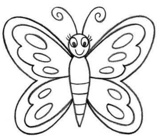 Sketsa Kupu Kupu Yang Indah Sekali Kupu Easy Butterfly Drawing