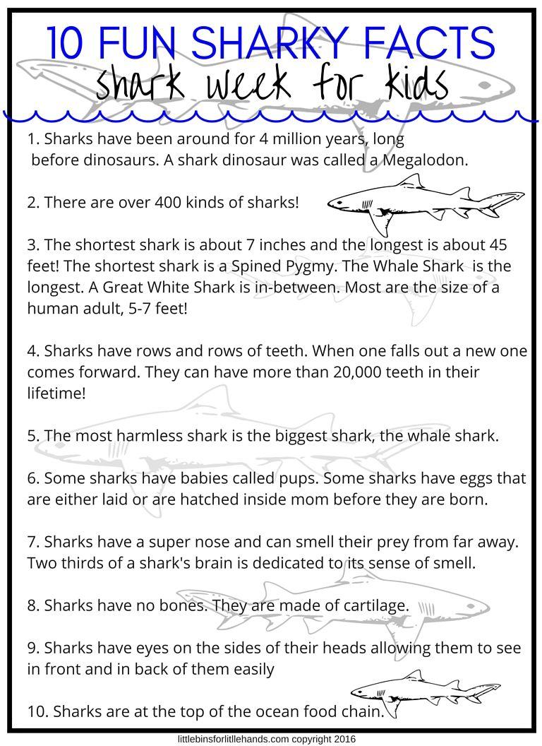 Shark Activities For Preschoolers And Beyond Shark Facts For Kids Shark Activities Shark Facts [ 1056 x 768 Pixel ]