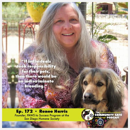 Renee Harris Founder Of Paws To Success Program At The San Diego Humane Society Humane Society Cats Society