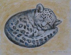 - Snow Leopard, babe napping  by Agnieszka Praxmayer