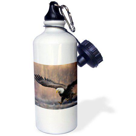 3dRose Nooksack River, Washington State, USA. Bald Eagle landing., Sports Water Bottle, 21oz