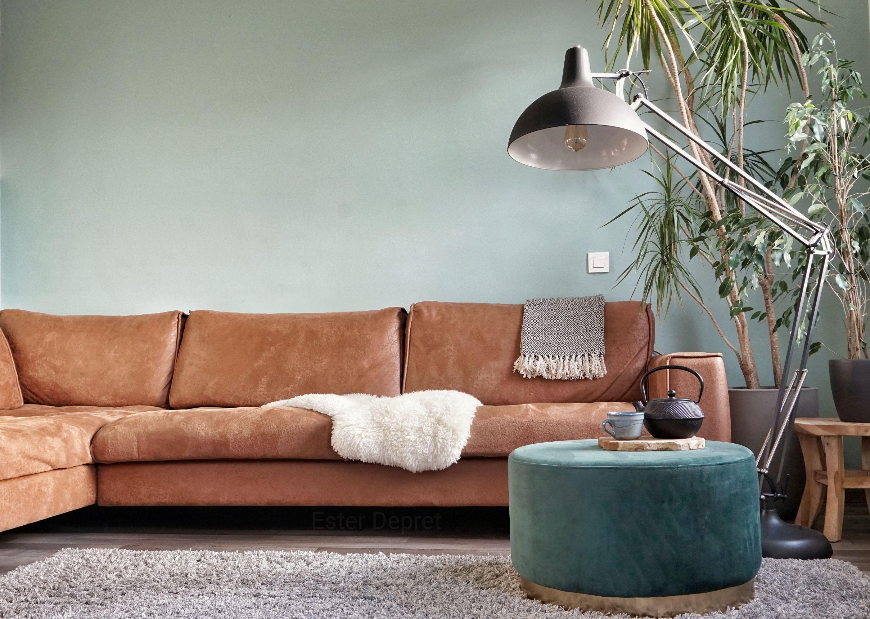 Photo of Warm interior cognac leather sofa