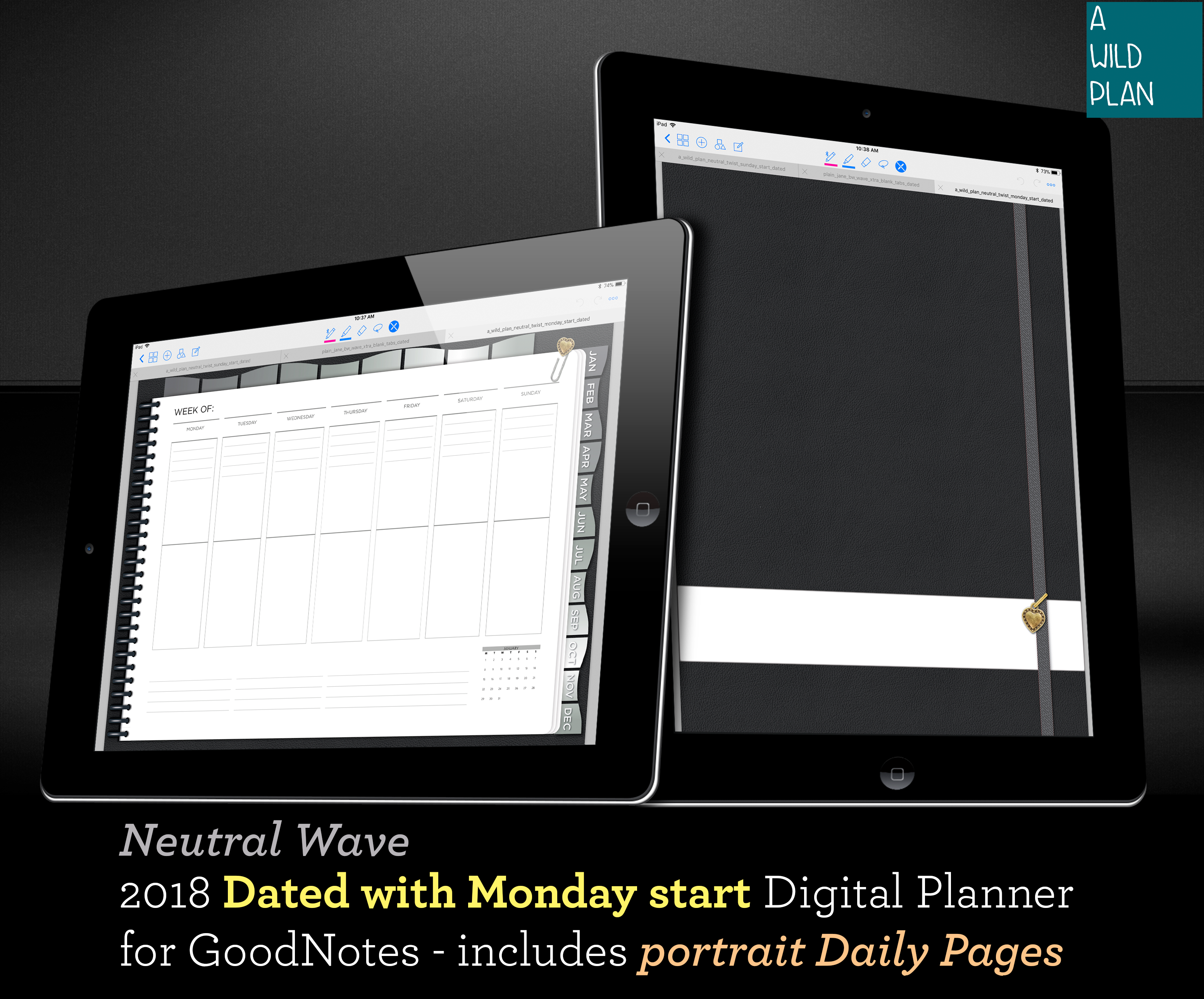GoodNotes iPad digital planner starter kit 2018 DATED - with