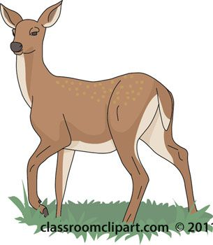 image result for white tailed deer clipart geocache pinterest rh pinterest co uk Deer Clip Art Black and White Deer Jumping Clip Art