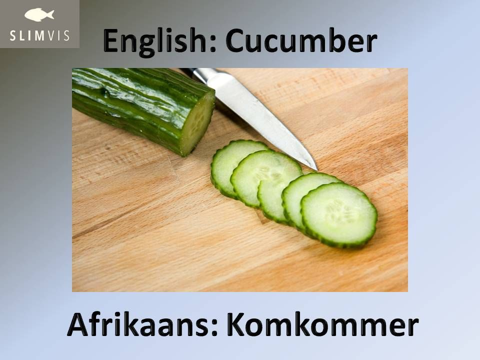 SlimVis. Word of the Week. Afrikaans. Cucumber. Salad ingredients.