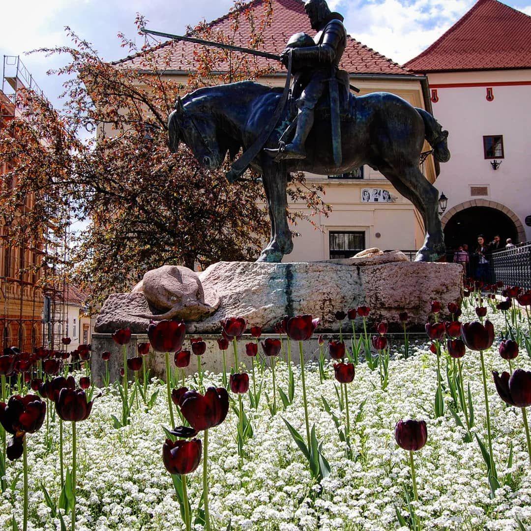 Springtime Zagreb Zagrebcroatia Croatia Europe Europetravel Spring Springtime Springtime Springtime Zagreb Zagreb Croatia Europe Travel Spring Time