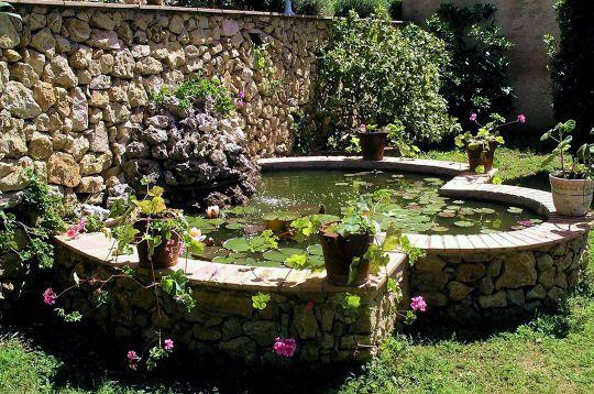 Jardin deau ou mare, hors sol ou dans la continuité de votre ...