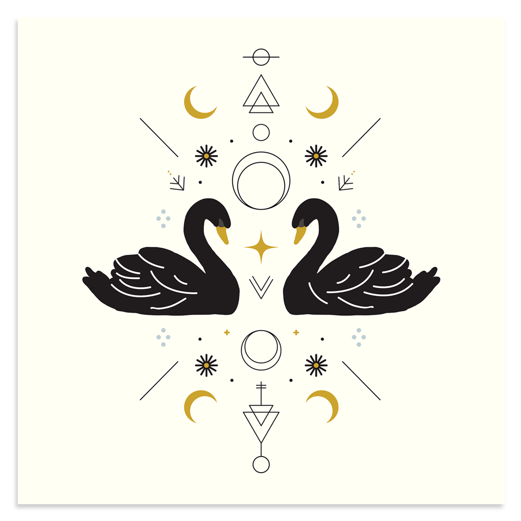 Poster Child Prints Swan Magic In 2019 Poster Child Prints Limited Edition Prints