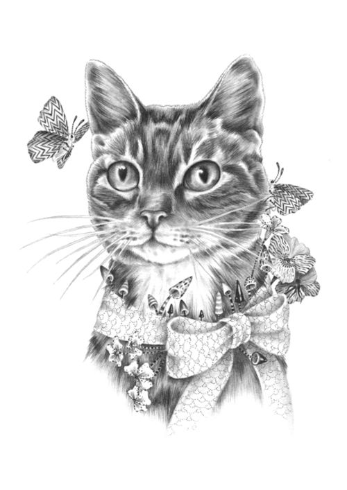 Cat drawing | cats&dog s | Pinterest | Cat drawing, Drawing sketches ...