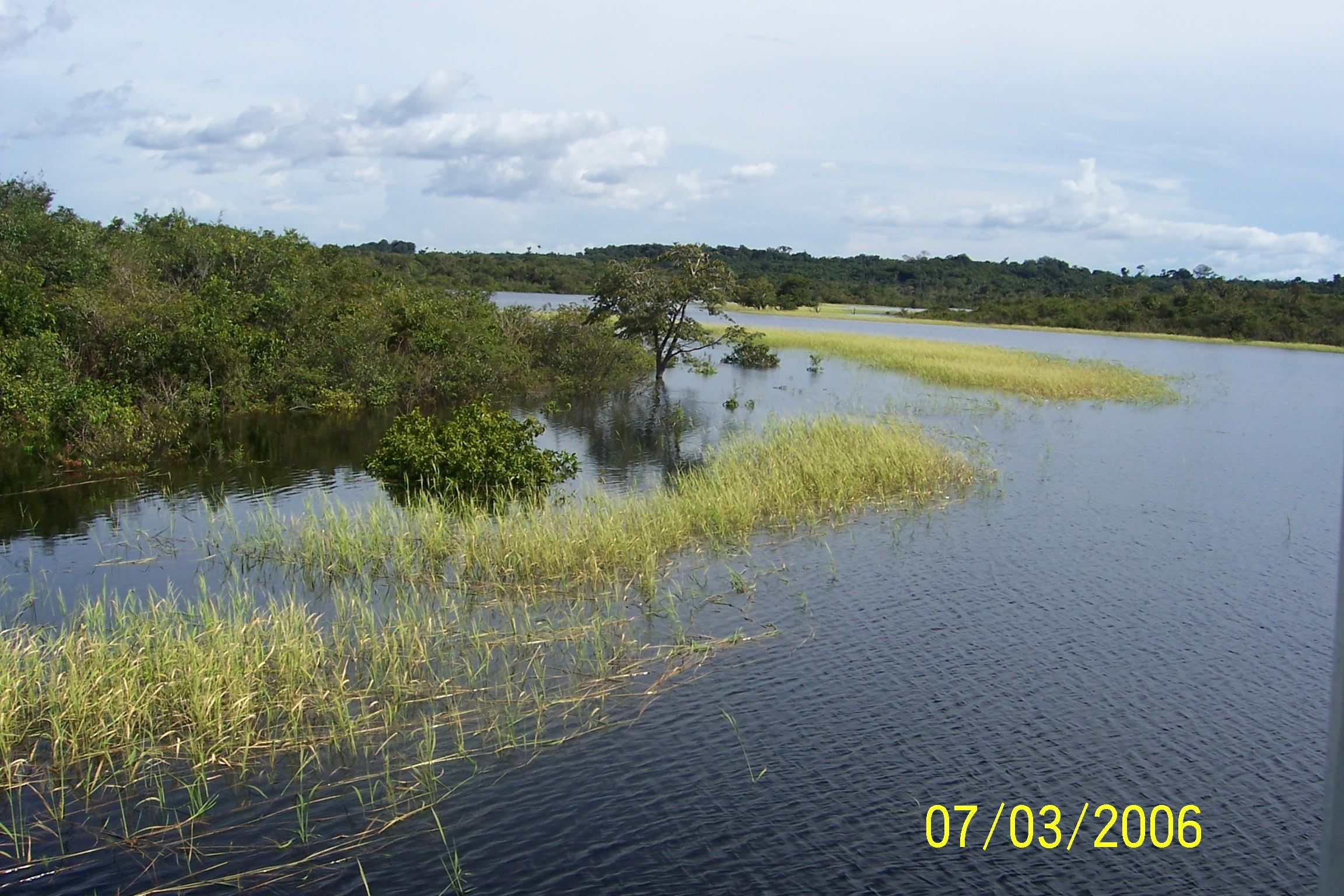 Amazon River near by our house on the water