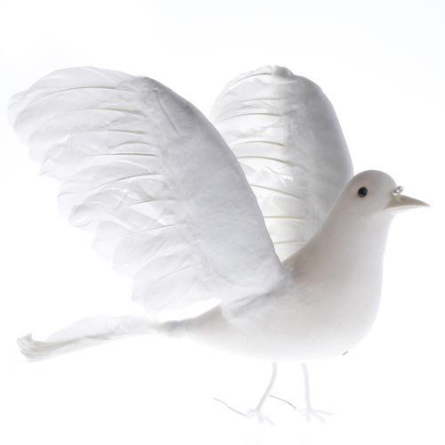 Artificial White Feather Dove Bird with Natural Feather A... http://www.amazon.com/dp/B0040554FM/ref=cm_sw_r_pi_dp_yY3sxb1MS23N8