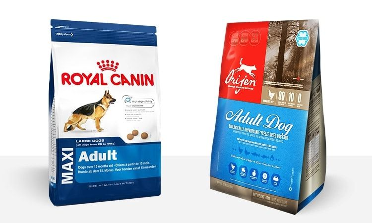 Orijen Dog Food Reviews >> Dog Food Review Royal Canin Maxi Adult Vs Orijen Adult Dog Food