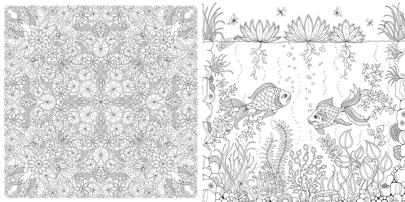 colouring books for adults in australia : Booktopia Has Enchanted Forest An Inky Quest Colouring Book By Johanna Basford Buy A Discounted Paperback Of Enchanted Forest Online From Australia S
