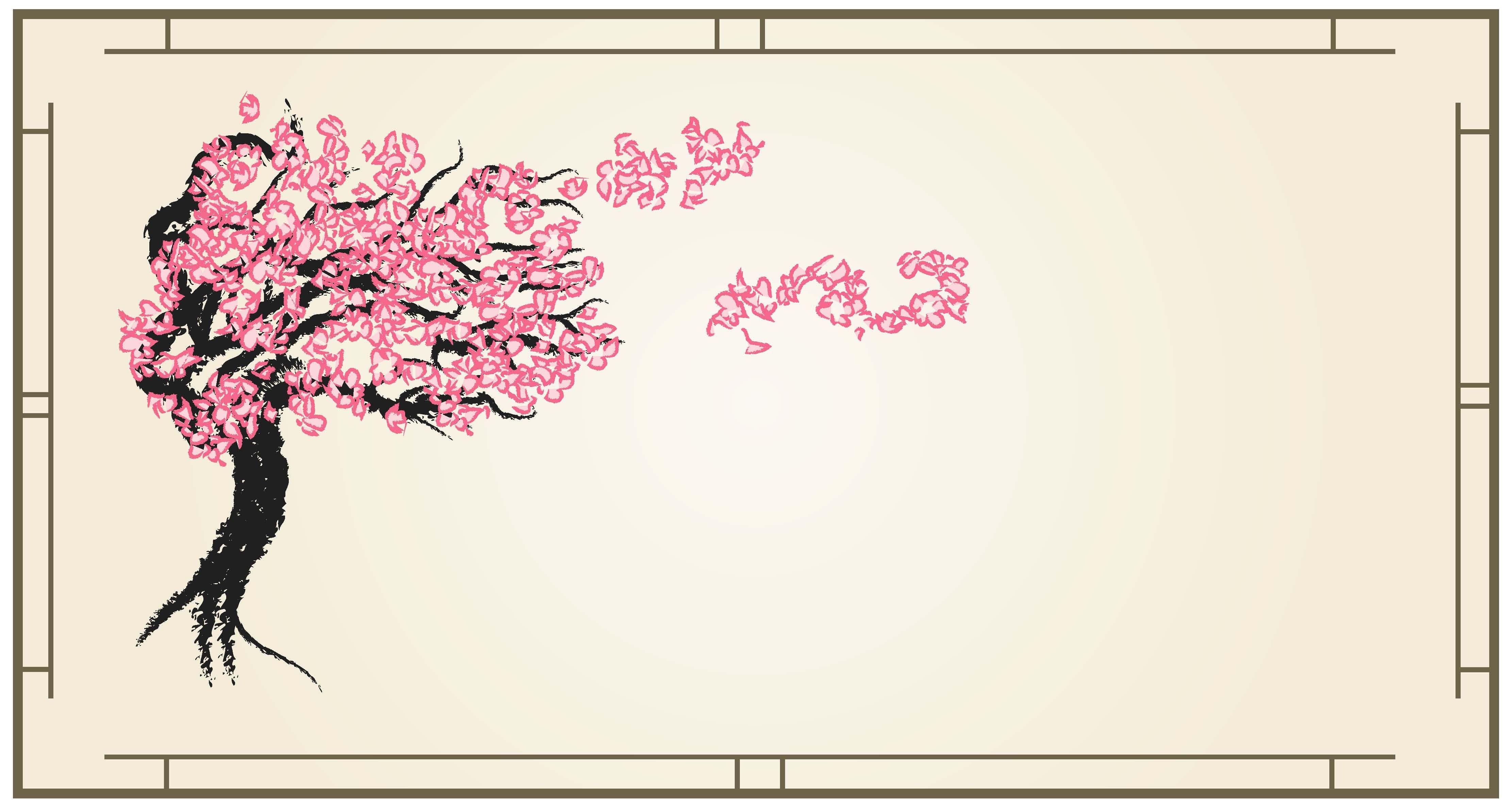 Cherry Blossom Tree Cherry Blossom Tree Blossom Trees Cherry Blossom