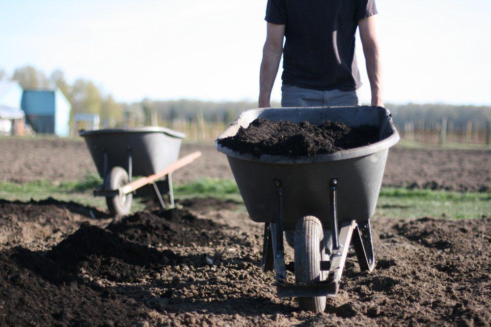 Soil Preparation (With images) Vegetable garden planning
