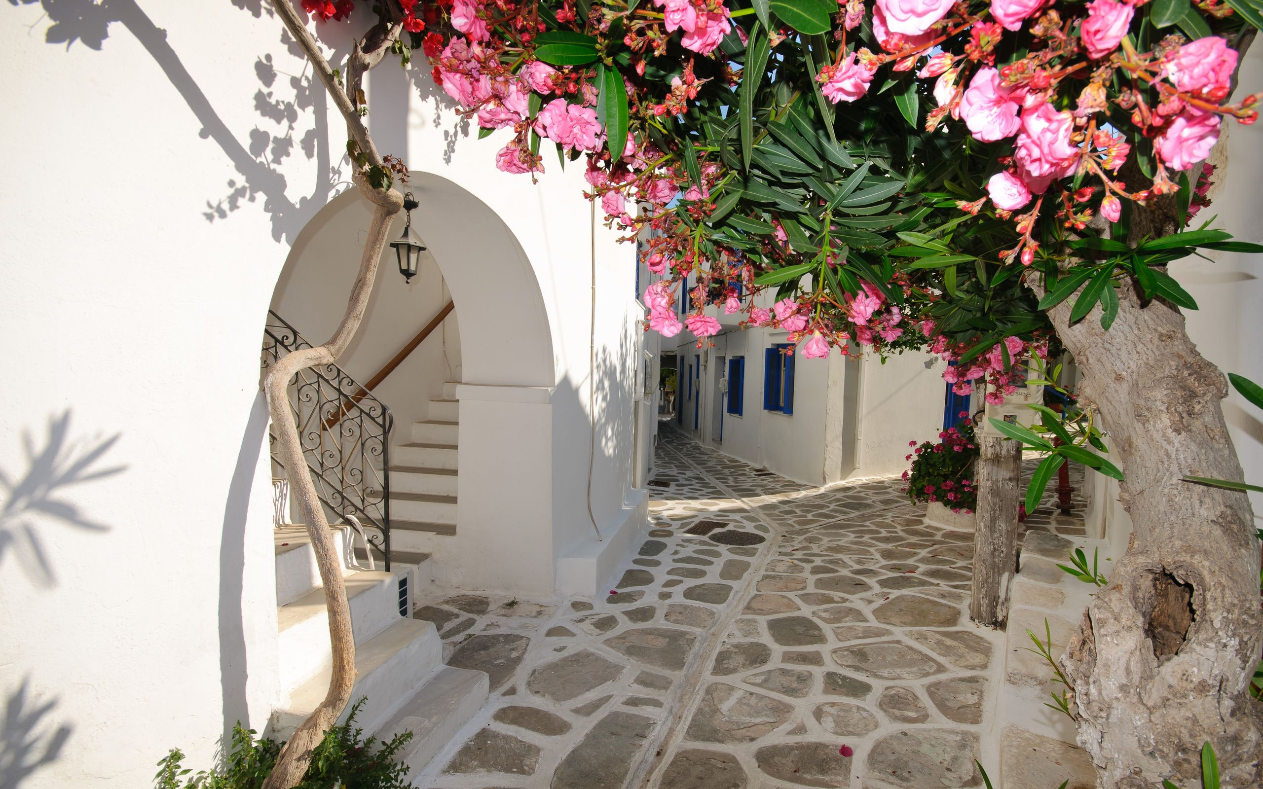 Santorini narrow streets greece 2560 x 1600 locality for 90s wallpaper home
