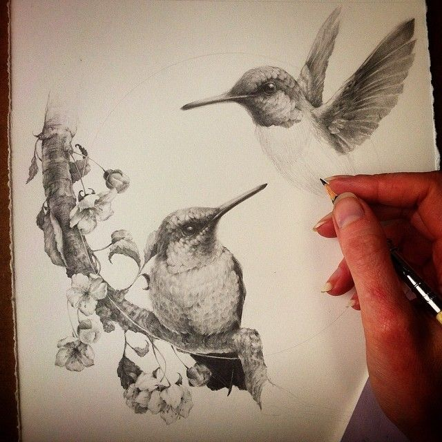 Hummingbirds and cherry blossoms by Vanessa Foley | Bitd ...