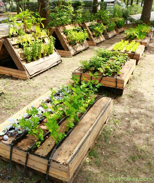 Building A Raised Garden, Pallets Garden