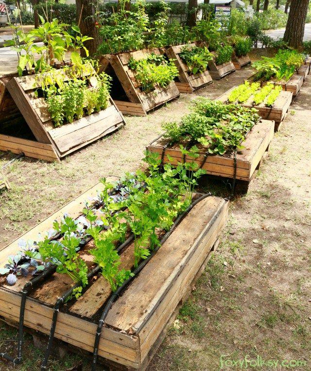 Pallet Garden Building a raised garden, Pallets garden