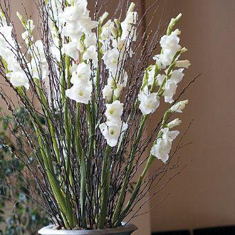 modern Real Weddings Photos Gladiolus centerpiece Birch