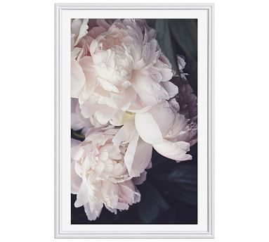 """Petals Framed Print by Cindy Taylor, 28 x 42"""", Ridged Distressed Frame, White, Mat"""