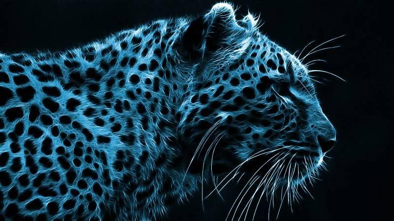 Tete De Leopard Image Artistique Couleur Bleu Noir Fond Ecran Fonds Ecran Papier Peint Gothique Image Artistique Dark Fantasy
