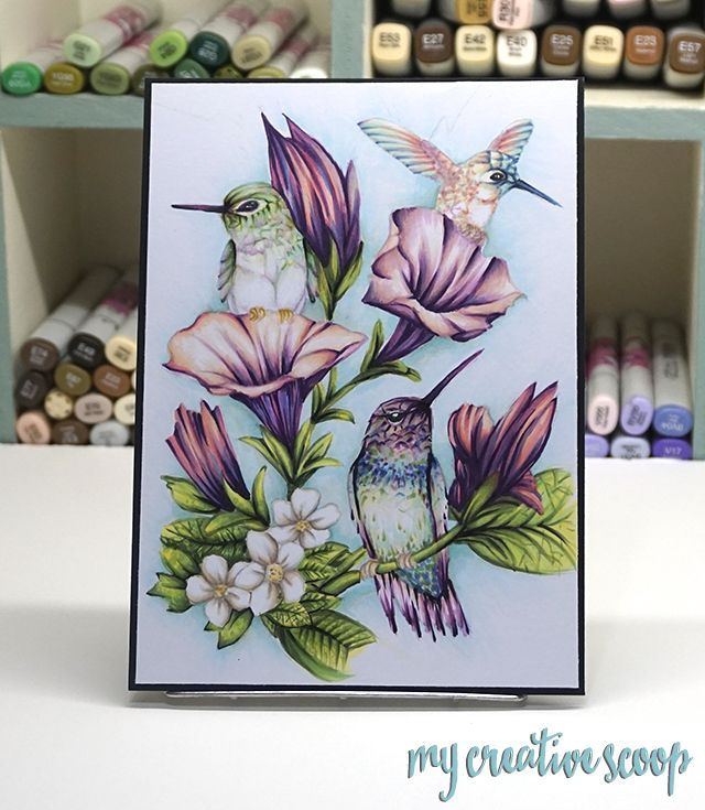 How to Color a Large Realistic Scene using Copic Markers+Hummingbird Tutorial - Step by step Coloring Tutorial and tips on coloring a scene.