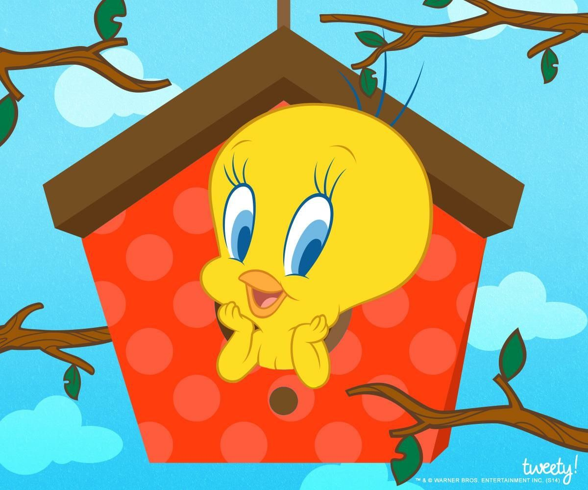 Tweety Bird Tweety Bird Quotes Baby Looney Tunes Tweety