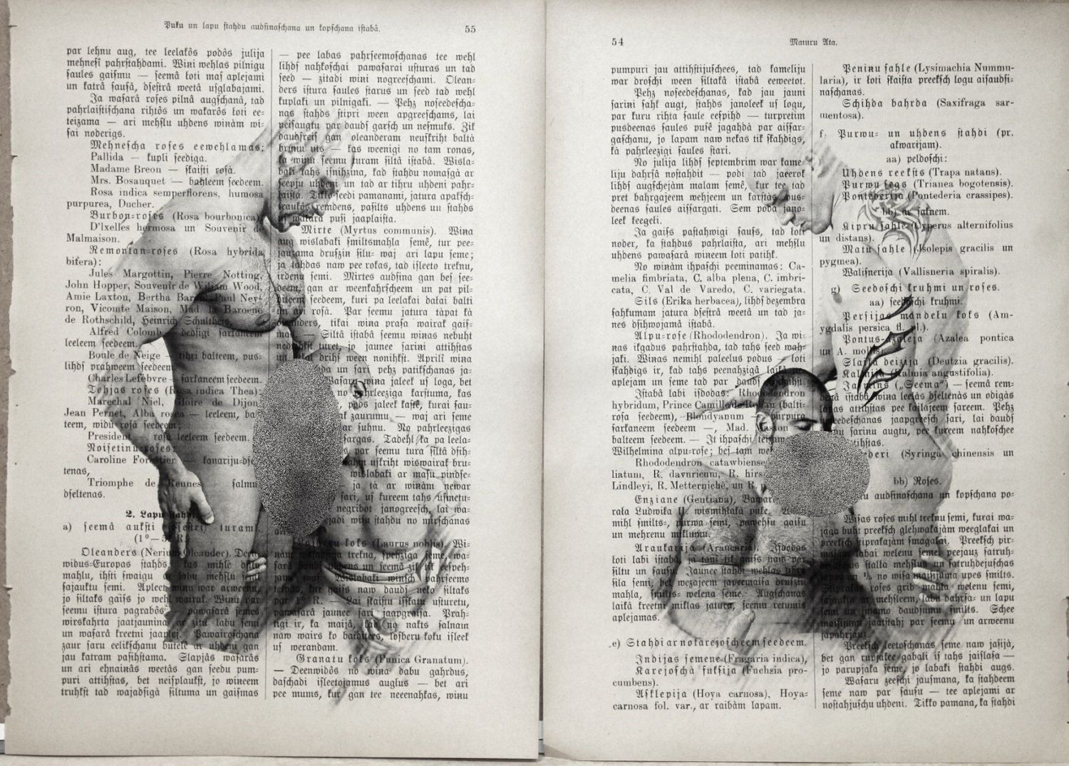 Erotic Gay poster  / Muscle mens love / nude muscular mens  /  Printing Antique  book  decor interior picture ART erotic souvenir by LeryPrint on Etsy