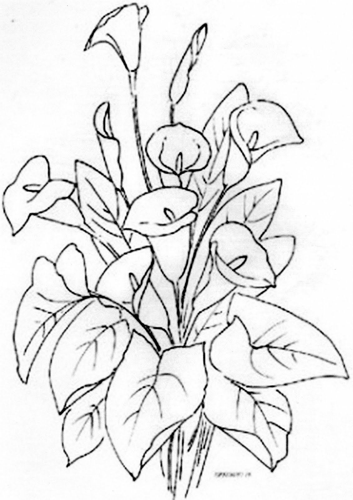 Risco flores Coloring pages, Flower drawing, Embroidery