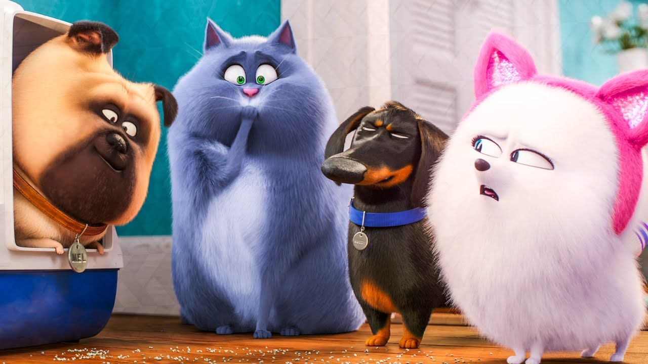 The Secret Life Of Pets 2 Review I Wanted To Do Something A Little Different For The Secret Life Of Pets 2 Best Kid Movies Secret Life Of Pets Kids Movies