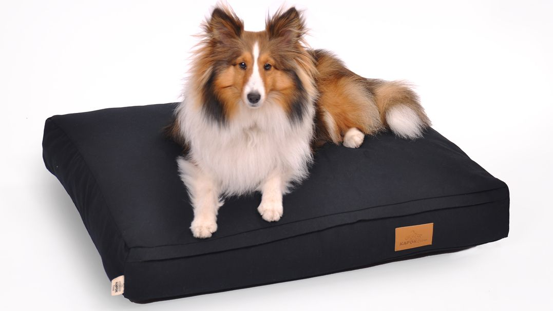 Organic Durable Dog Bed Covers And Zippered Cover Durable Dog Bed Covered Dog Bed Dog Bed Dog beds with zipper covers