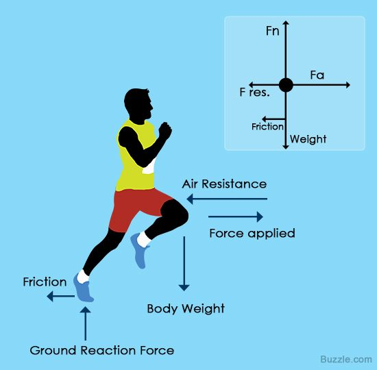 Forces And Force Diagrams