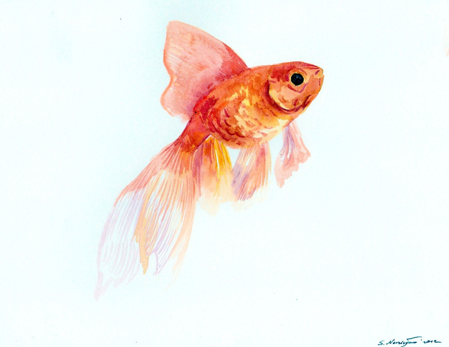 Goldfish Watercolor Paintings | Request a custom order and ...
