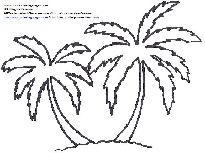 Palm Tree Coloring Pages Shape For Onesies Palm Tree Drawing