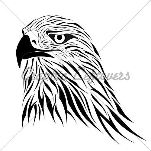 tribal hawk tattoo designs hawk head tribal tattoo design