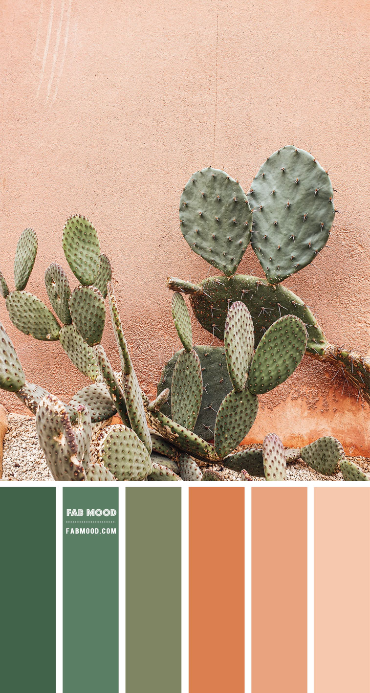 Chive Green and Terracotta Colour Scheme – Colour