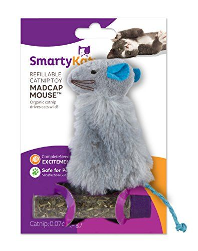 Smartykat Madcap Mouse Cat Toy Refillable Catnip Toy Click Image To Review More Details Note It Is Affiliate Homemade Cat Toys Catnip Toys Cat Accessories