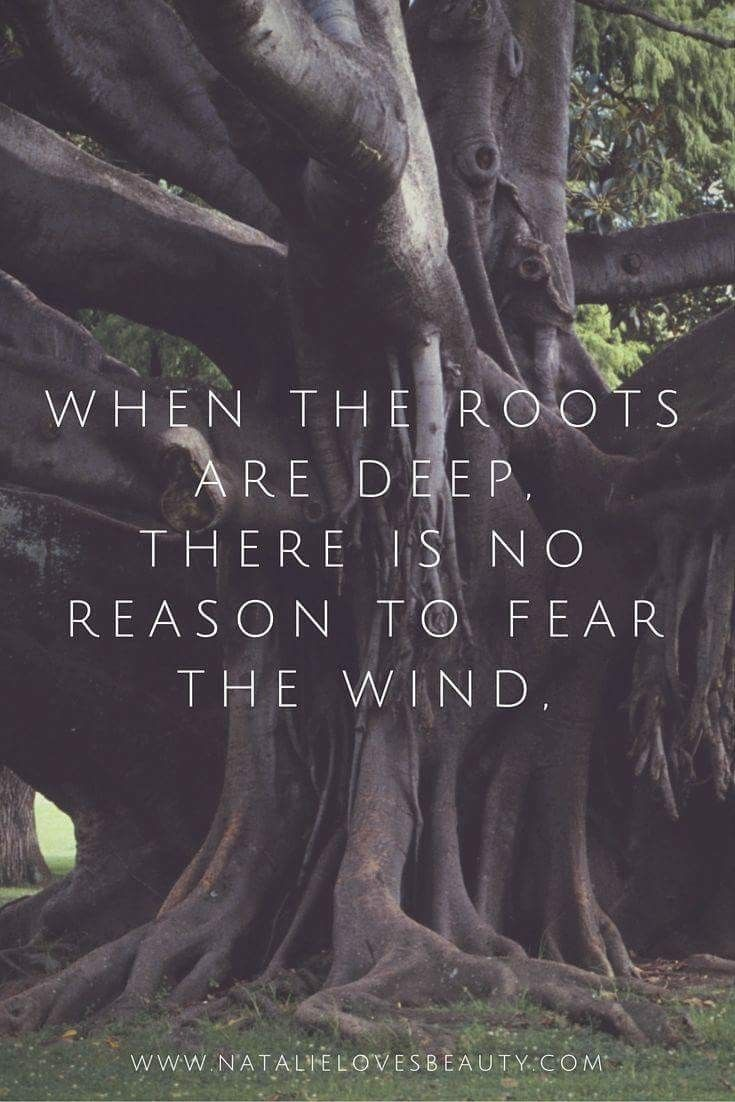 bijbel citaten en spreuken I am the storm whispered the warrior | True | Pinterest | Citaten  bijbel citaten en spreuken