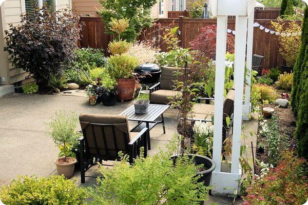 our backyard Backyard, Yards and Patios