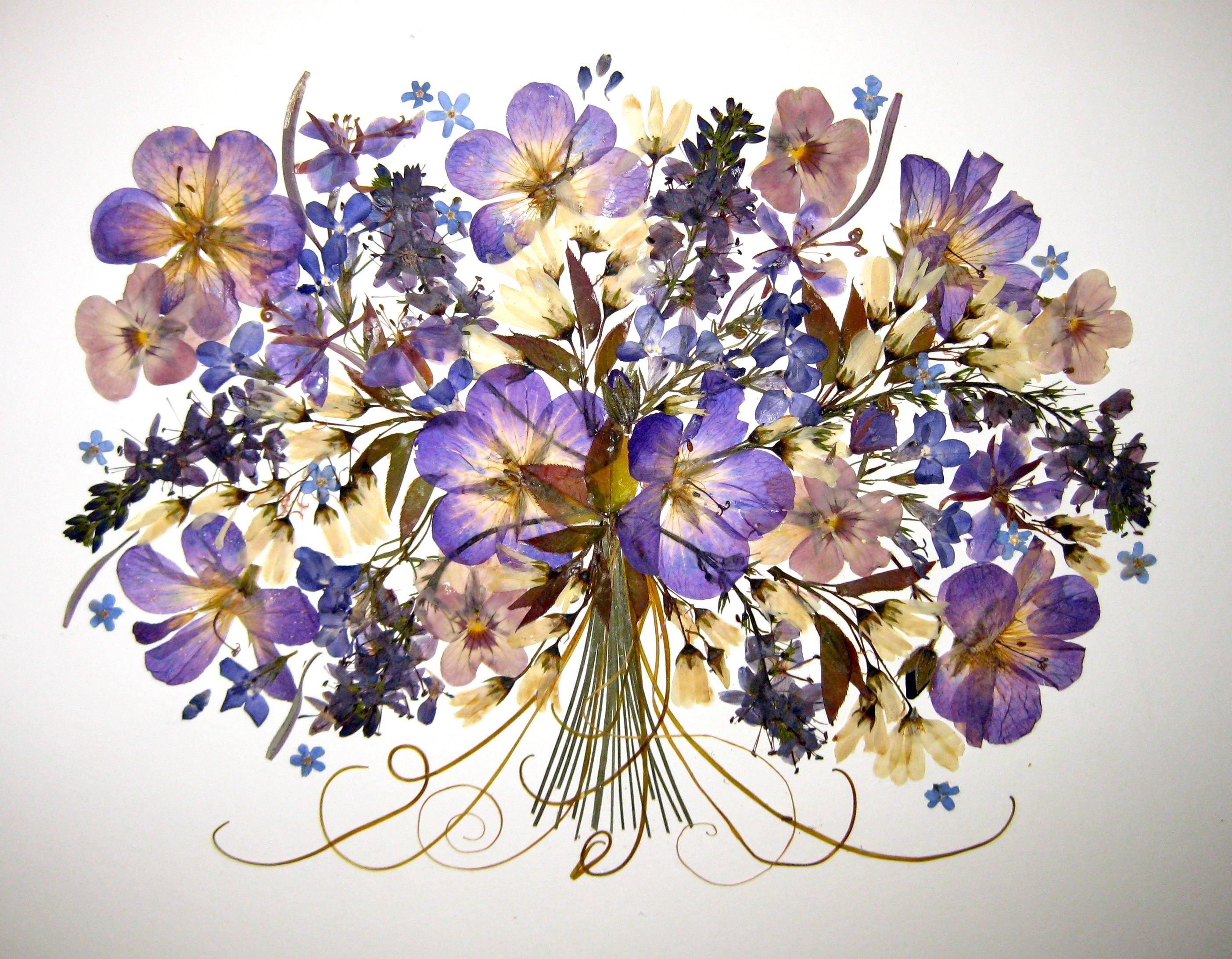 stunning blues and purples - dried art | Flowers displays ...
