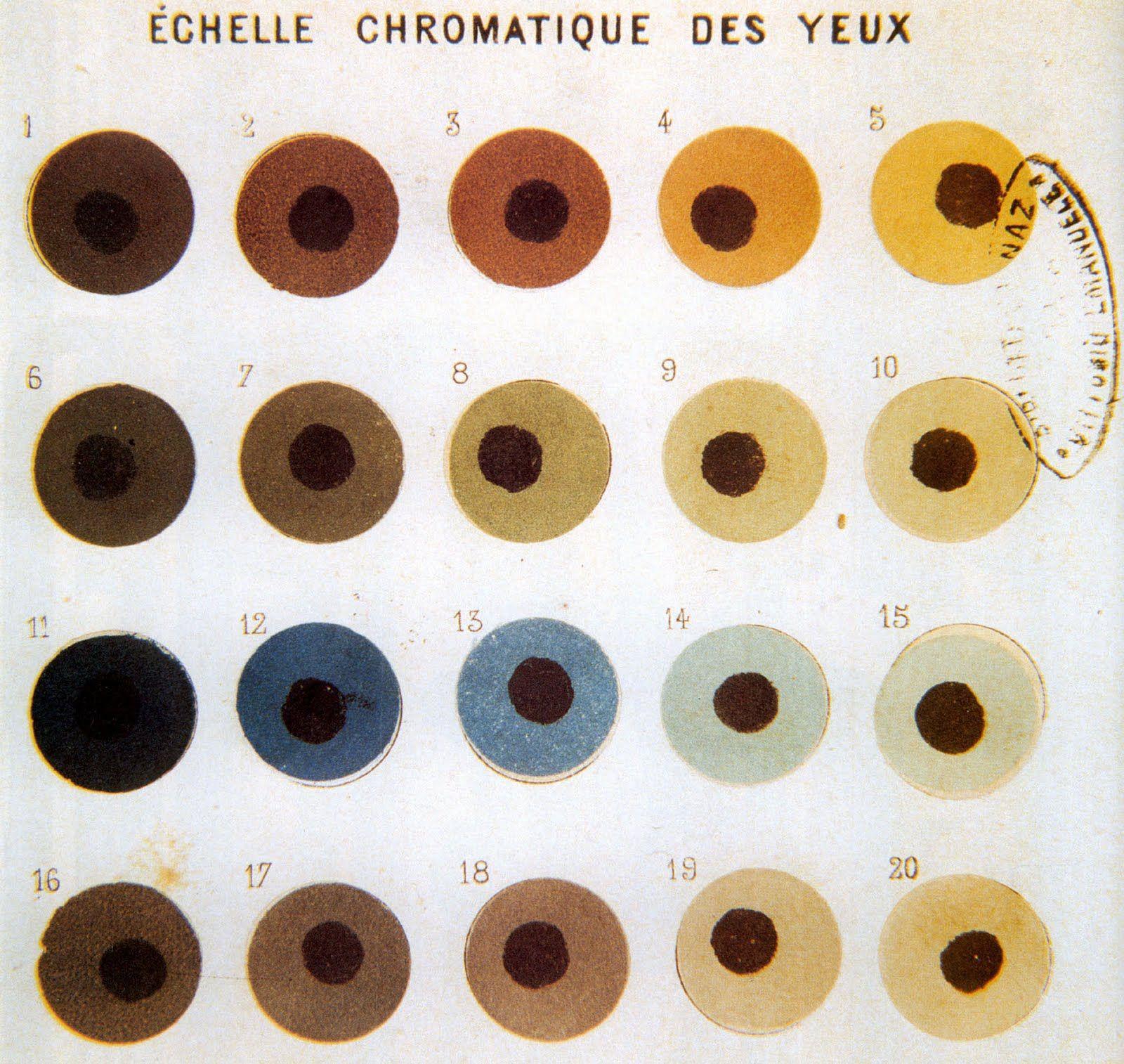 Eye chart colors pinterest chart eye and illustrations eye chart nvjuhfo Choice Image
