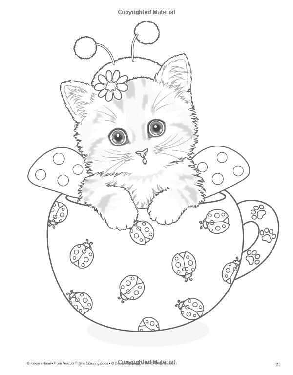 Teacup Kittens Coloring Book Kayomi Harai 9781497202269 Amazon