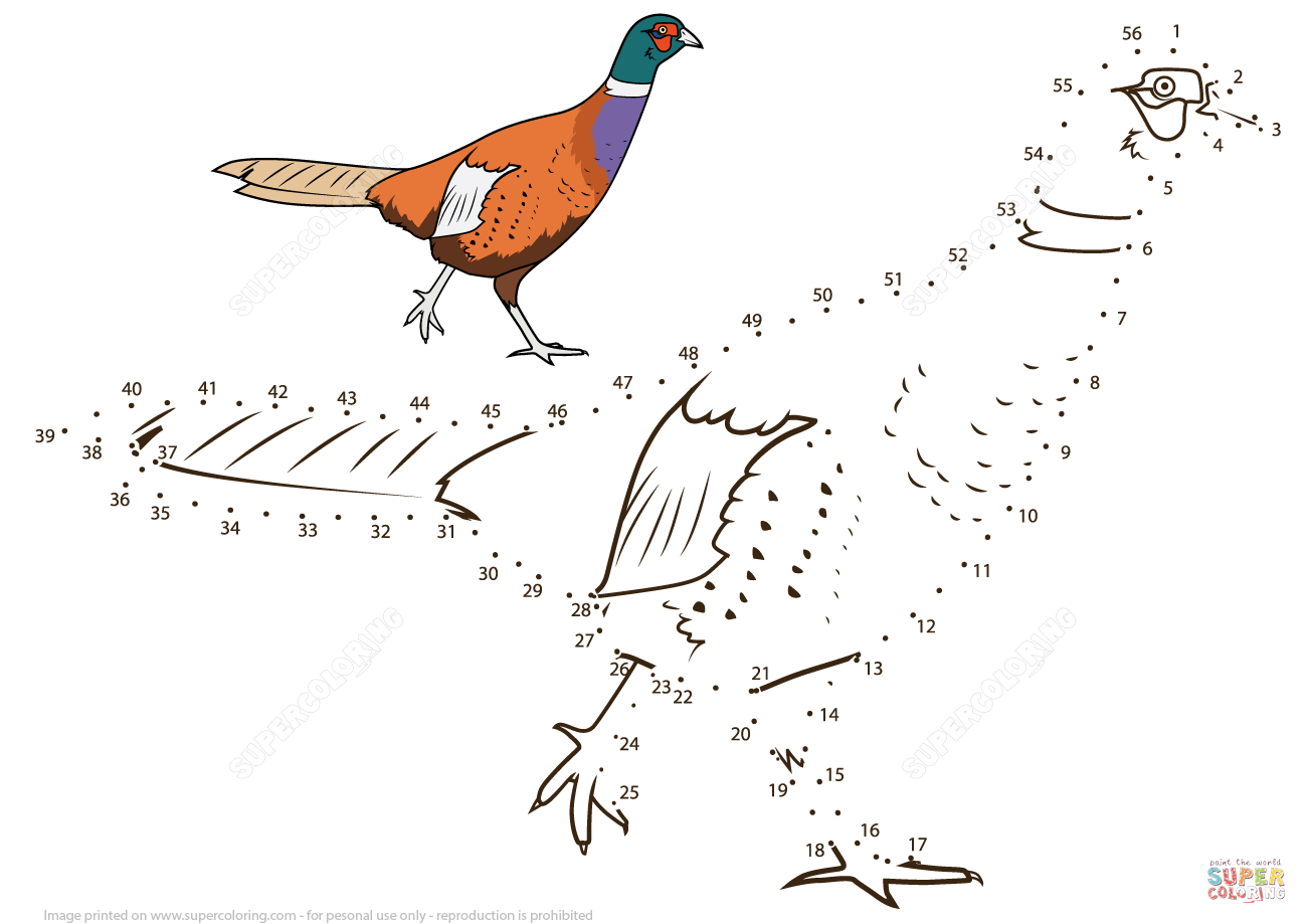 Pheasant Dot To Dot