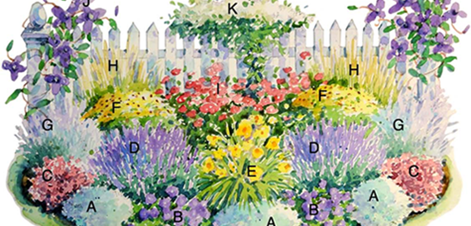 Sunloving perennials for around the mailbox Plant Projects – Mailbox Garden Plans