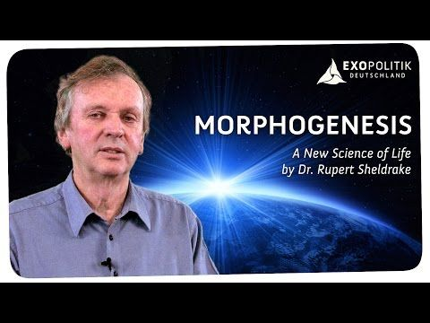 Rupert Sheldrake: Morphogenesis - A New Science of Life - YouTube