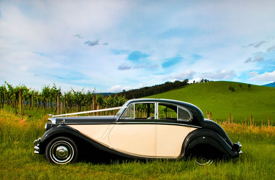 Www Tripler Com Au We Love This Photograph As It Really Captures The Stunning Side Profile Of Our Jaguar Mk5 Sedan In Two T Wedding Car Wedding Car Hire Jaguar