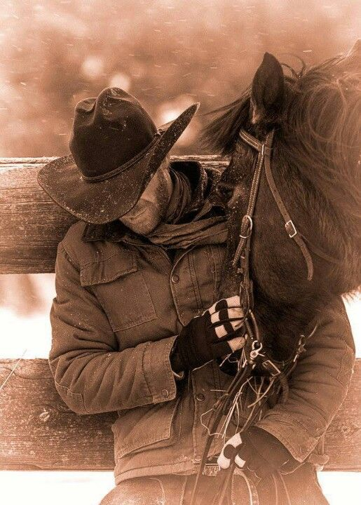 Cowboys Fotografia De Cavalos Roupas De Vaqueiro Cavalos Pintados