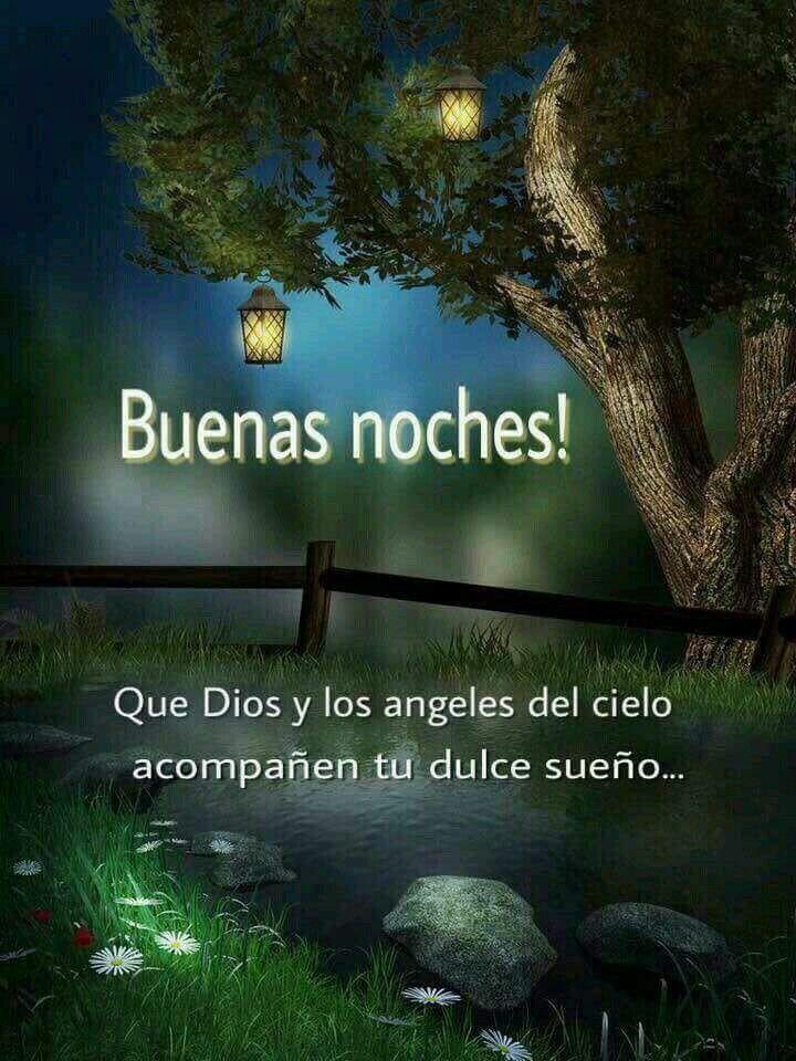 Linda Noche, Feliz Día, Buenas Noches Frases, Cosas Bonitas, Buenos Días,  Feliz Cumple Años, Frases Buenisimas, Palabras, Frases De Diosas