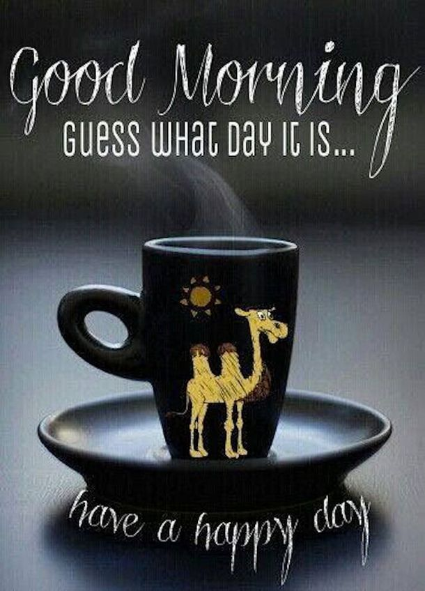 20 Best Good Morning Happy Wednesday Quotes Good Morning Wednesday Happy Wednesday Quotes Good Morning Happy